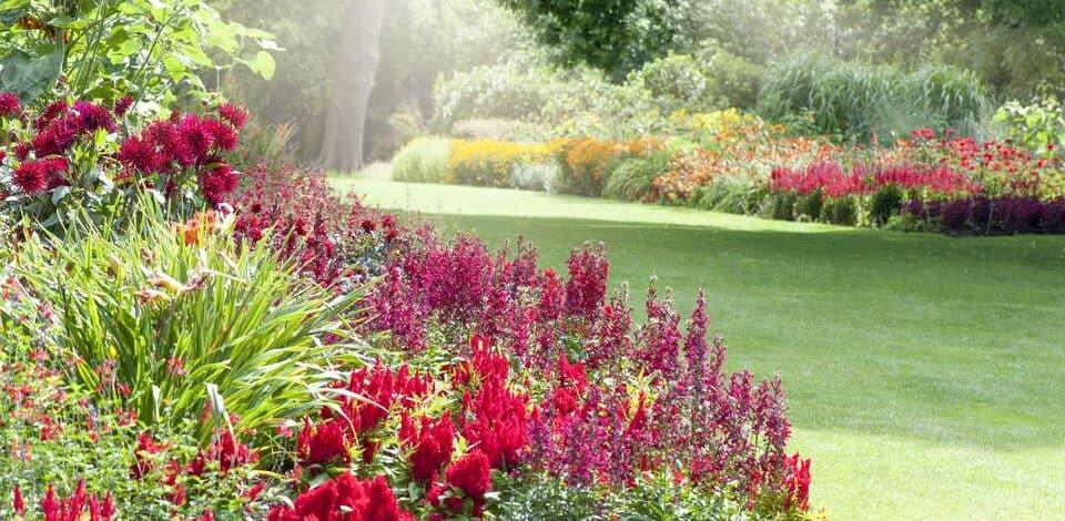 Perennial flower garden Bellevue, WA