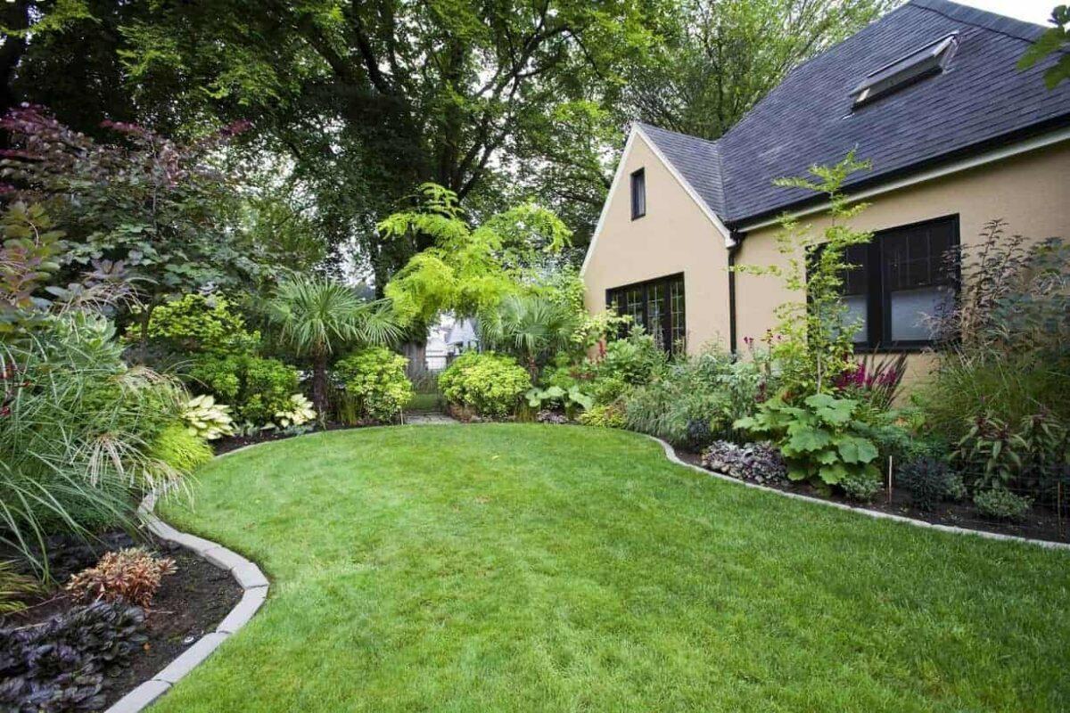 Bellevue Landscape Install Services Contractor Veths Landscape